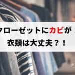 クローゼットにカビが生えている場合、衣類にもカビが移るの?