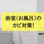 浴室(お風呂)のカビを除去する3つの方法