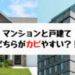 マンションと一戸建て、どちらのほうがカビやすいのか