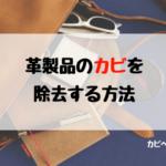 バッグや靴など革製品についたカビの除去方法と生やさせないための方法