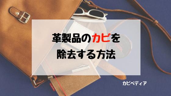 dd8e5d23cd82d バッグや靴など革製品についたカビの除去方法と生やさせないための方法 ...