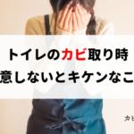 密室キケン!死にかけた!トイレの黒カビを除去する方法と注意点