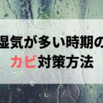 湿気が多い時期のカビ対策