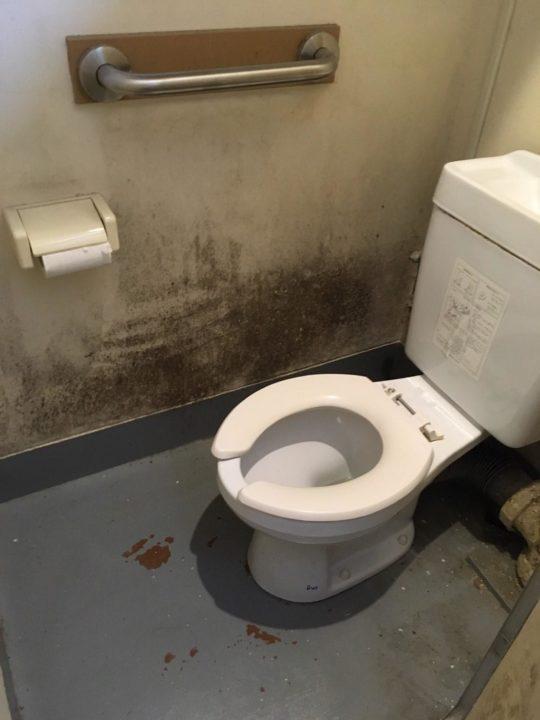 トイレのカビ
